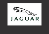 Well Done Promotions supplying NEC Exhibition Staff, Promotional Staff and Hospitality Staff to JAGUAR. Quality Promo Girls and Exhibition Girls NEC.Professional Exhibition Staff Agency NEC and Event Staffing Agency for NEC Birmingham, UK.